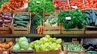 Tips Dan Modal Awal Berdagang Sayuran Bagi Pemula