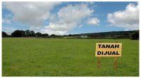 Tips Investasi Tanah Bagi Pemula Agar Tidak Merugi